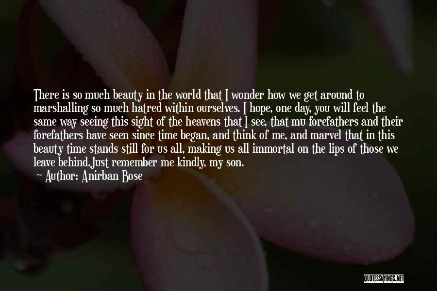 Seeing Beauty In Life Quotes By Anirban Bose