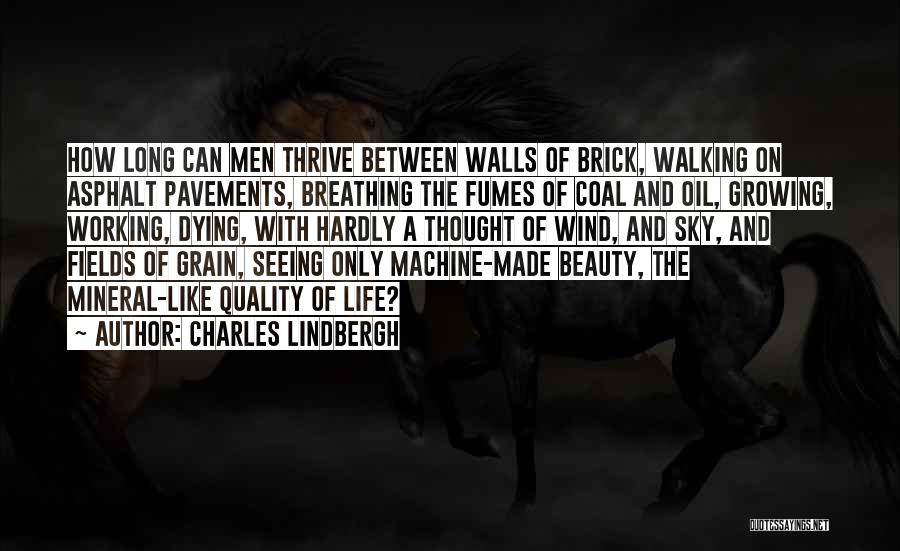 Seeing Beauty In Life Quotes By Charles Lindbergh