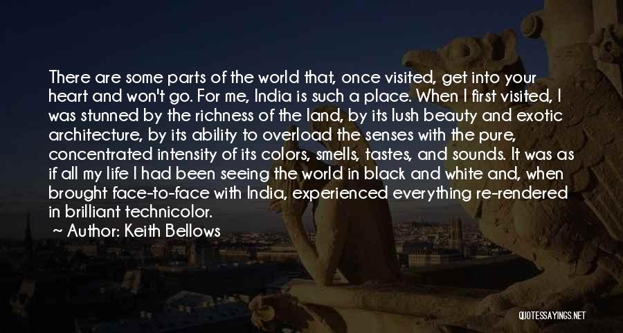Seeing Beauty In Life Quotes By Keith Bellows