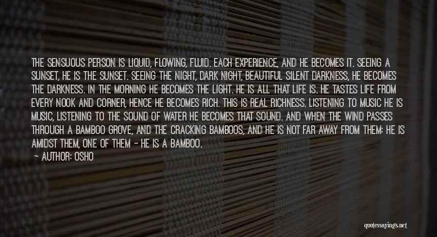 Seeing The Light Through The Darkness Quotes By Osho