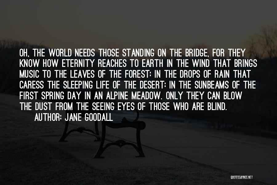Seeing The World Quotes By Jane Goodall