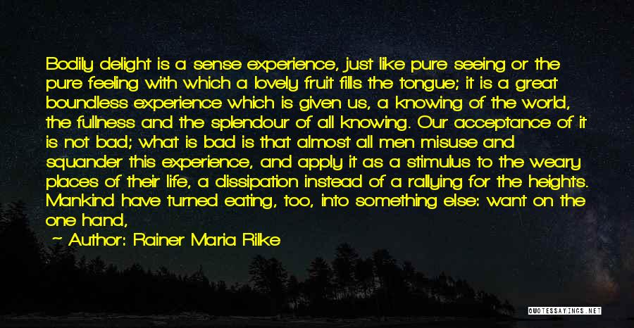Seeing The World Quotes By Rainer Maria Rilke
