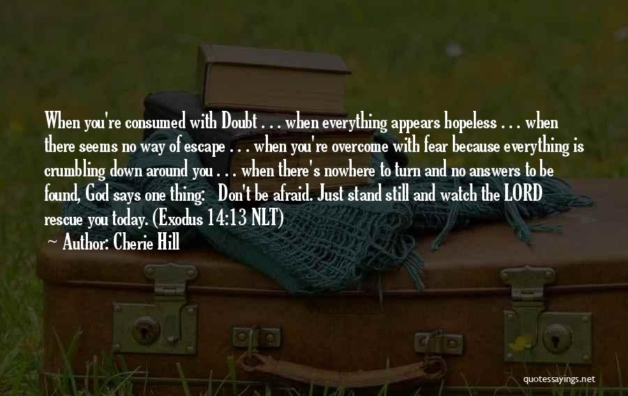 Seems Hopeless Quotes By Cherie Hill