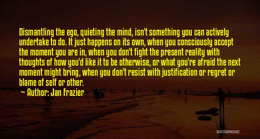 Self Justification Quotes By Jan Frazier