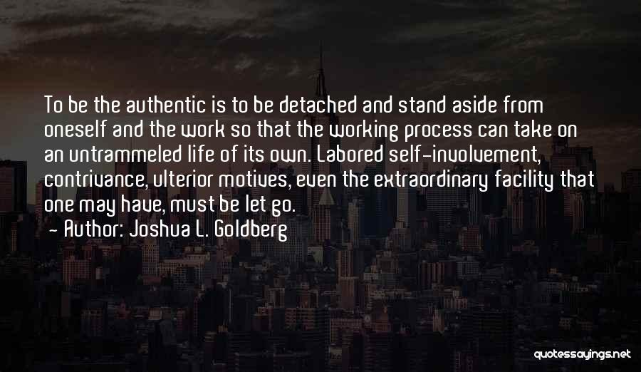 Self Motives Quotes By Joshua L. Goldberg