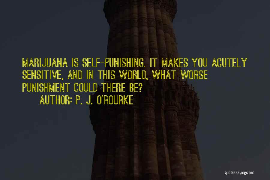 Self Punishment Quotes By P. J. O'Rourke