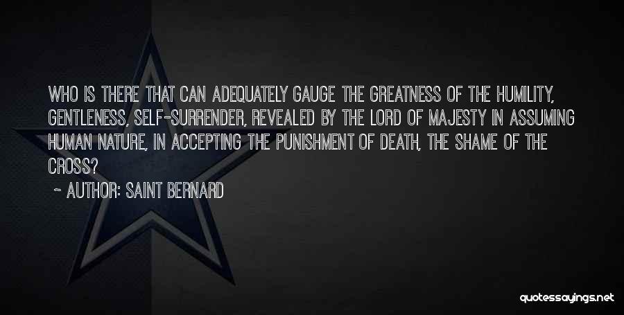 Self Punishment Quotes By Saint Bernard