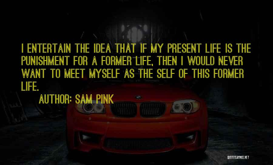 Self Punishment Quotes By Sam Pink