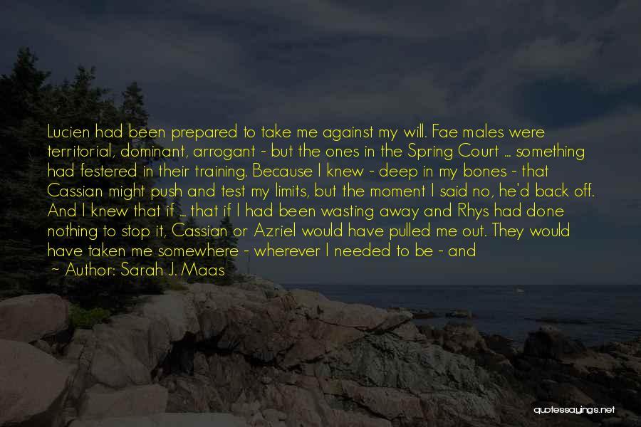 Self Push Quotes By Sarah J. Maas