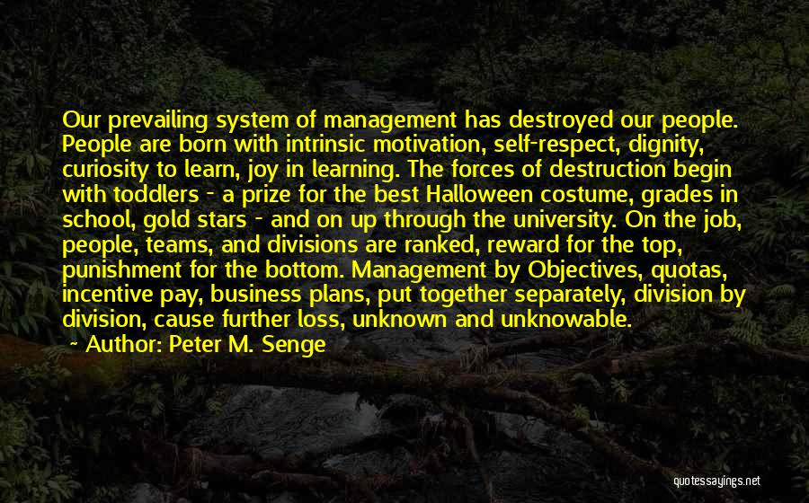 Self Respect Best Quotes By Peter M. Senge