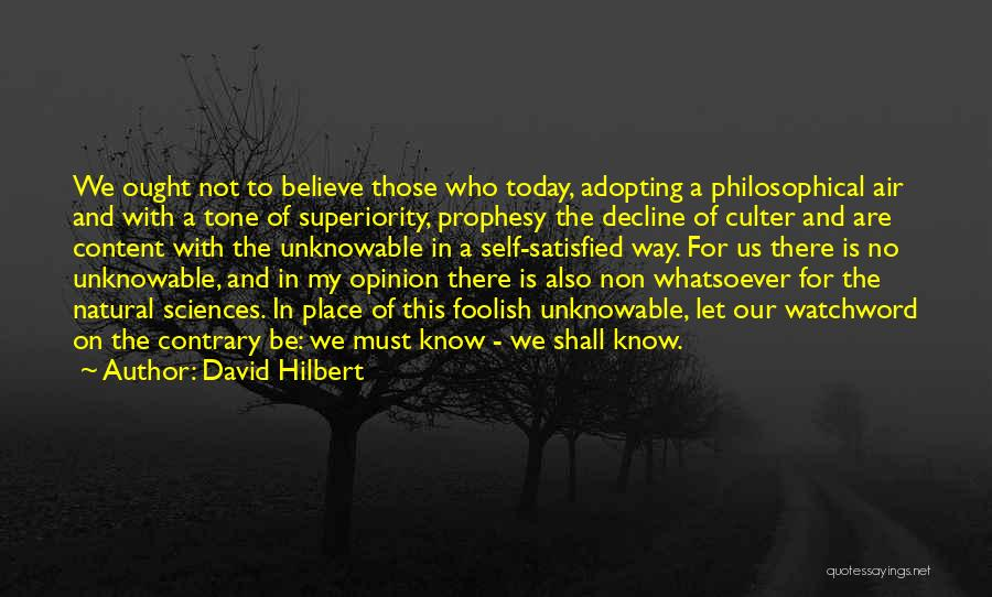 Self Superiority Quotes By David Hilbert