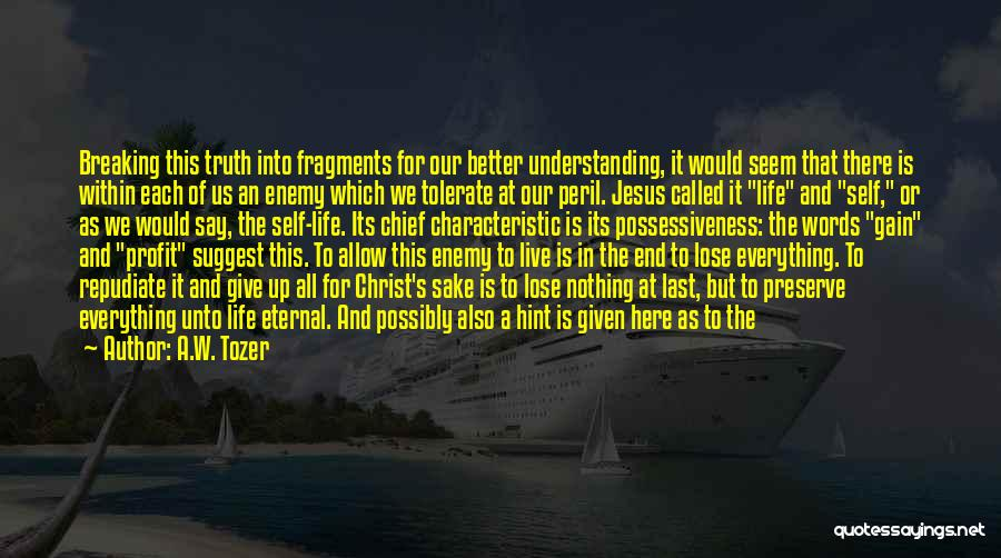 Self Understanding Quotes By A.W. Tozer