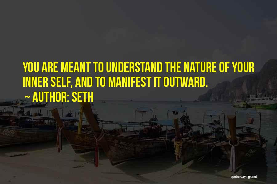 Self Understanding Quotes By Seth