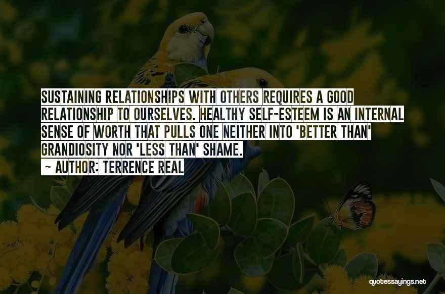 Self Worth Quotes By Terrence Real