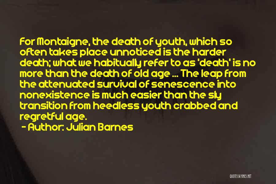 Senescence Quotes By Julian Barnes