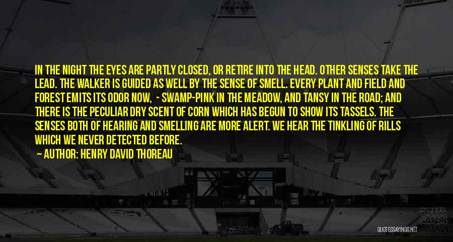 Senses Smell Quotes By Henry David Thoreau