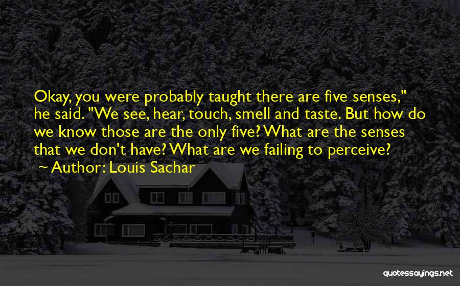 Senses Smell Quotes By Louis Sachar