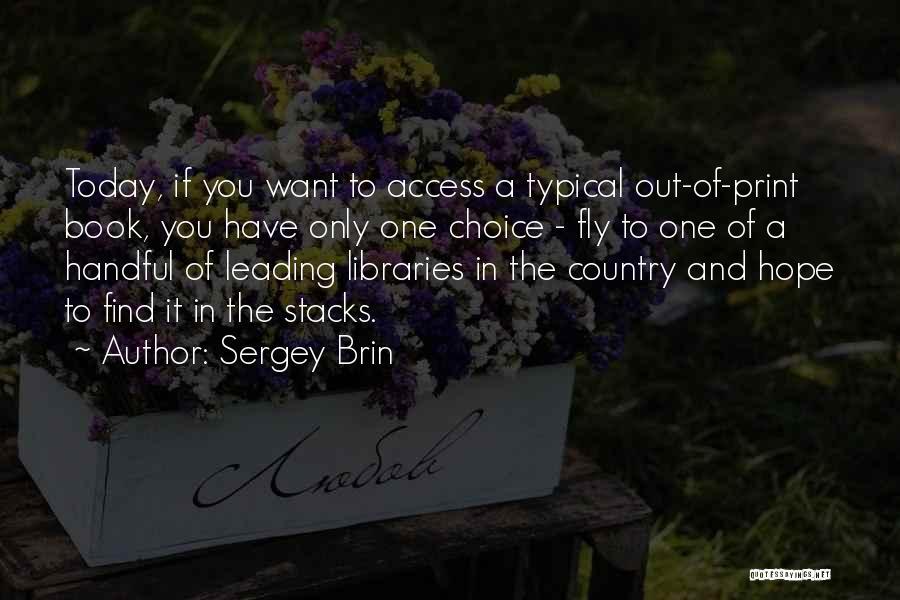Sergey Brin Quotes 110863