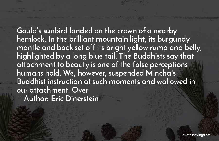 Set Off Long Quotes By Eric Dinerstein