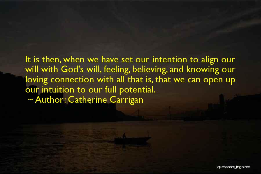 Set Up Quotes By Catherine Carrigan