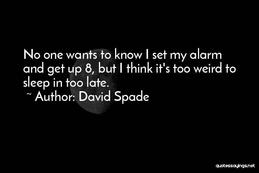 Set Up Quotes By David Spade