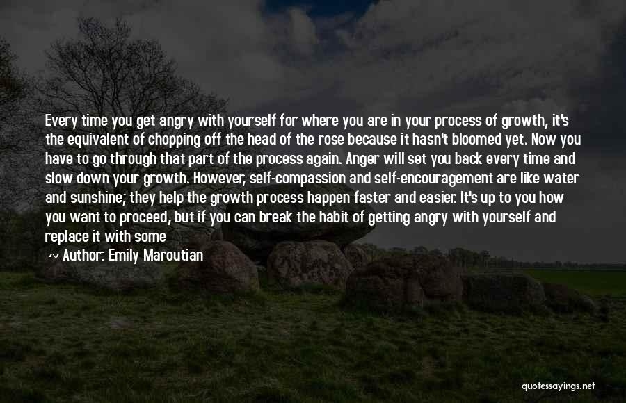 Set Up Quotes By Emily Maroutian