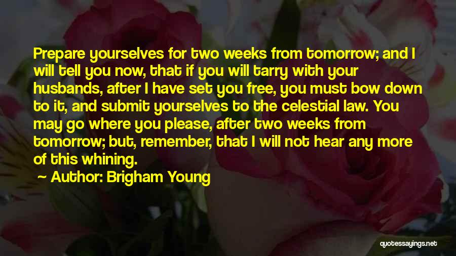 Set You Free Quotes By Brigham Young