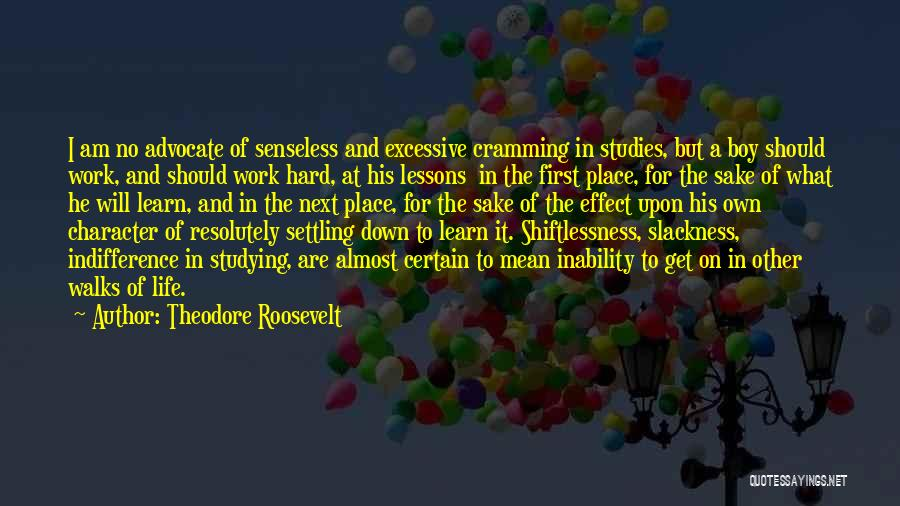 Settling Down In Life Quotes By Theodore Roosevelt