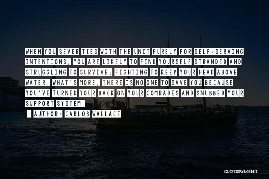 Sever All Ties Quotes By Carlos Wallace