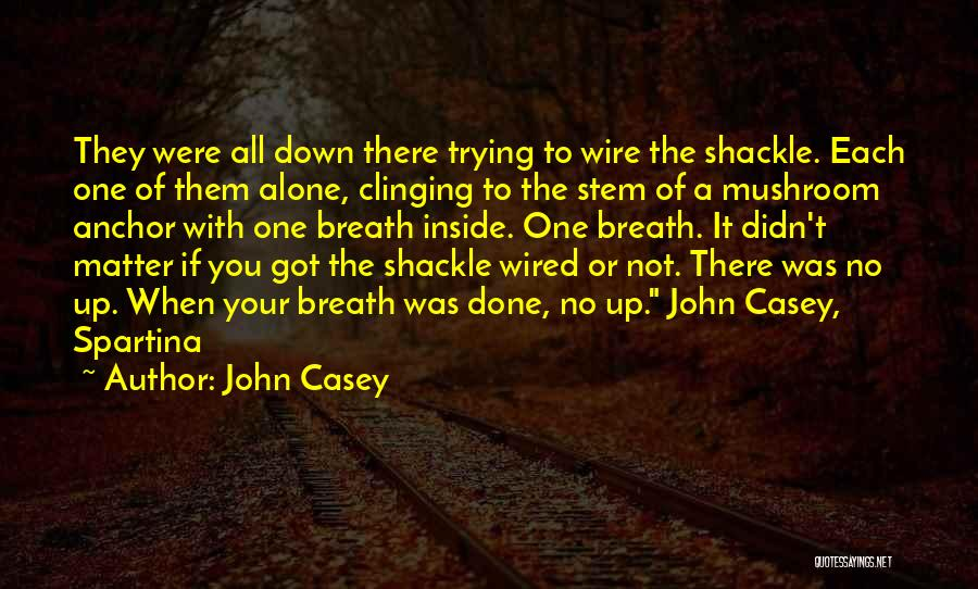 Shackle Quotes By John Casey