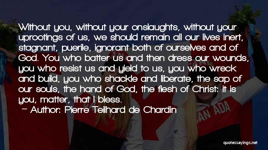 Shackle Quotes By Pierre Teilhard De Chardin