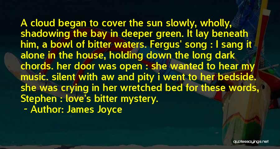 Shadowing Love Quotes By James Joyce