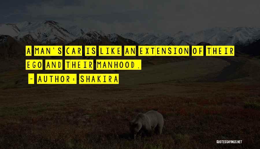 Shakira Quotes 1761393