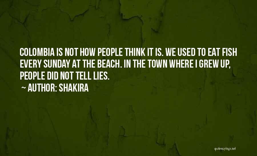 Shakira Quotes 936330