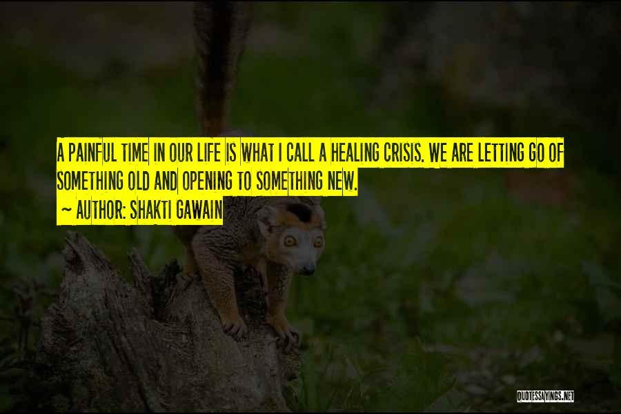 Shakti Gawain Quotes 1727778