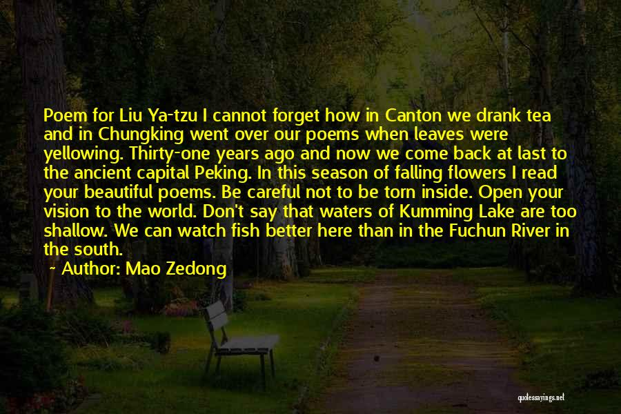 Shallow River Quotes By Mao Zedong