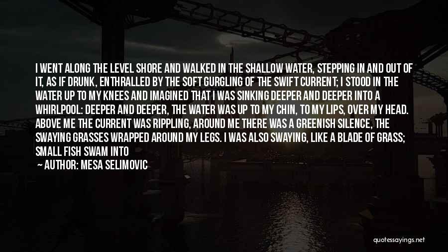 Shallow River Quotes By Mesa Selimovic