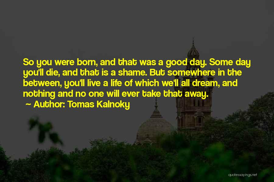 Shame In You Quotes By Tomas Kalnoky