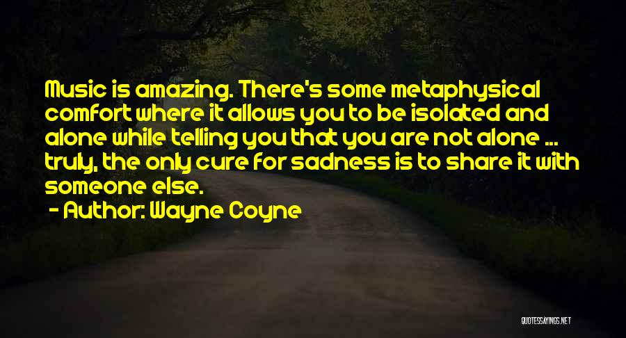 Share Your Sadness Quotes By Wayne Coyne