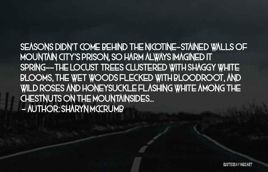 Sharyn McCrumb Quotes 1894289