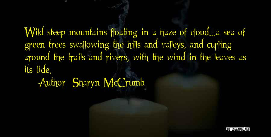 Sharyn McCrumb Quotes 230818