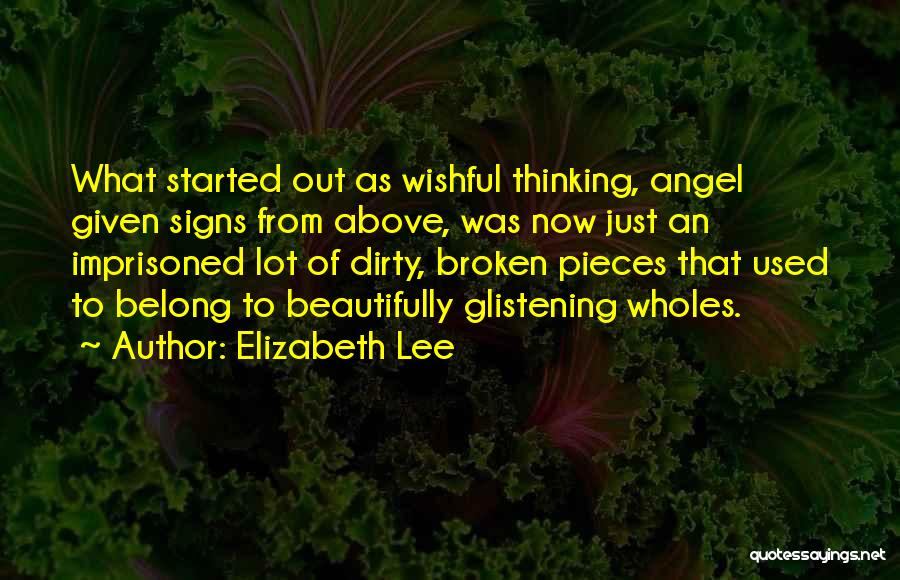 Shattered Pieces Quotes By Elizabeth Lee