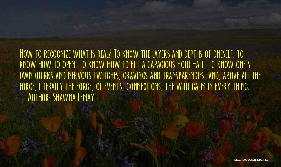 Shawna Lemay Quotes 1859149