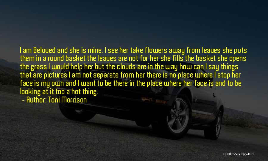 She Is Not Mine Quotes By Toni Morrison