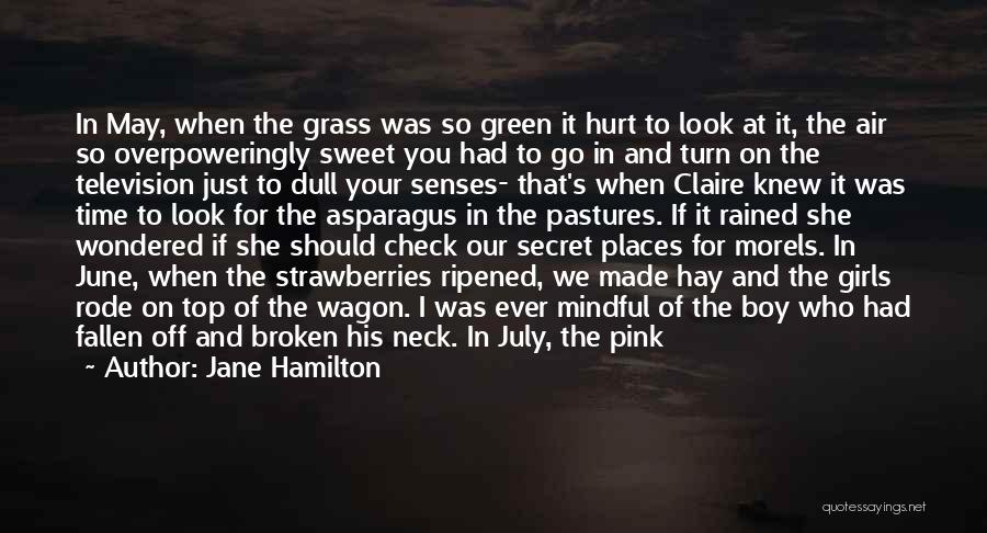 She Was Hurt Quotes By Jane Hamilton
