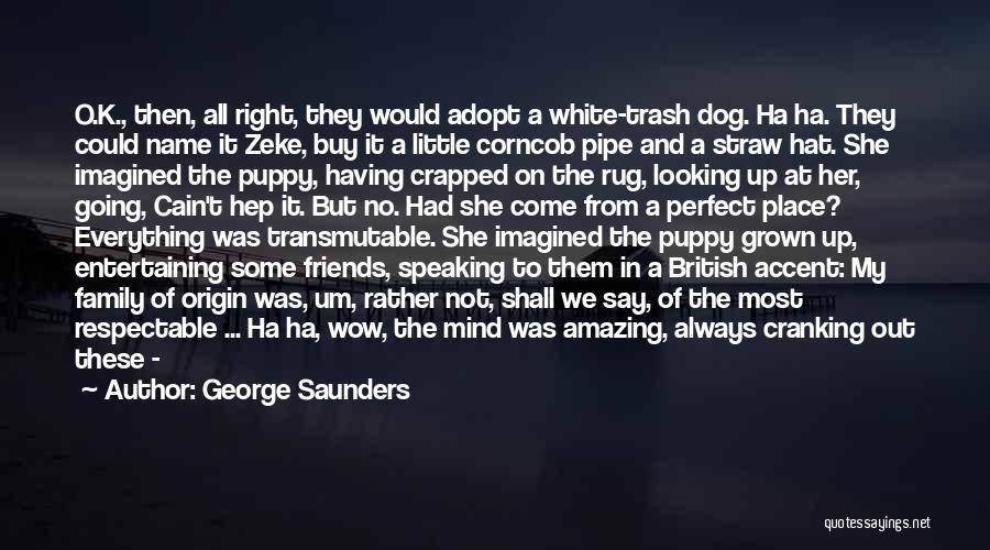 She Was Perfect Quotes By George Saunders
