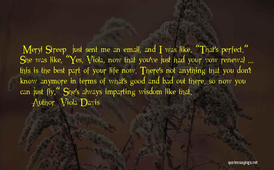 She Was Perfect Quotes By Viola Davis