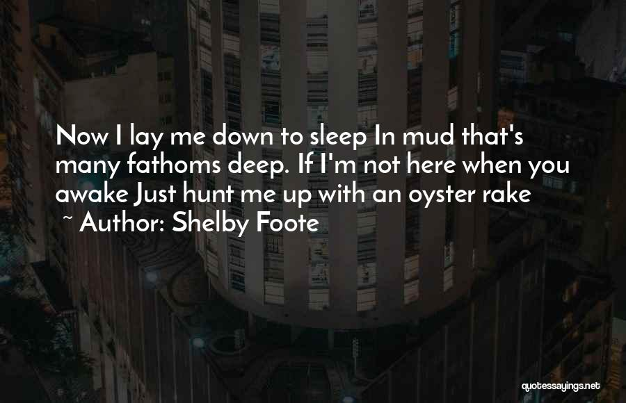 Shelby Foote Quotes 169839