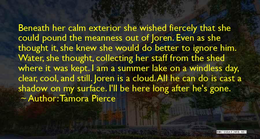 She'll Be Gone Quotes By Tamora Pierce