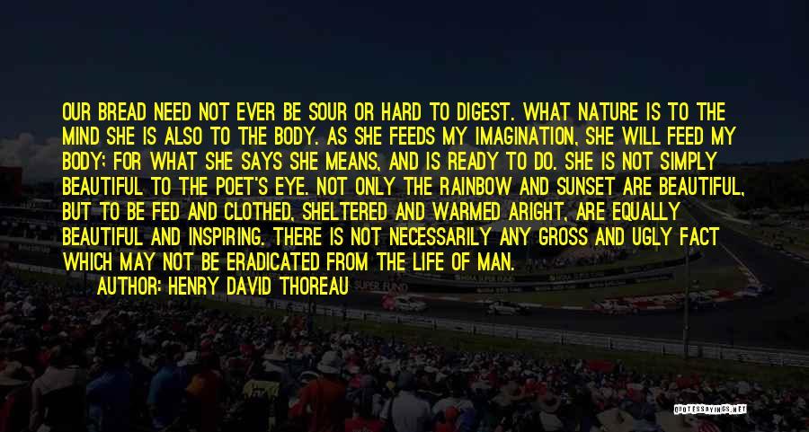 Sheltered Life Quotes By Henry David Thoreau